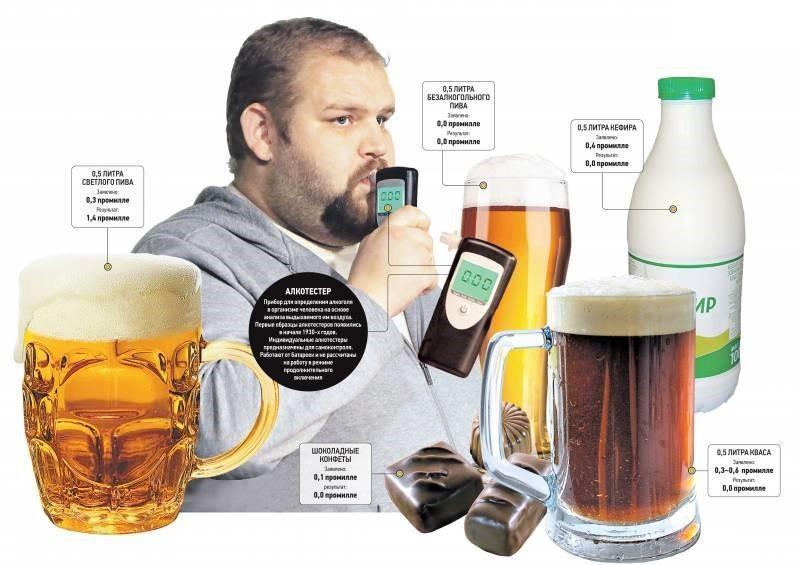 Скорость выведения пива из организма