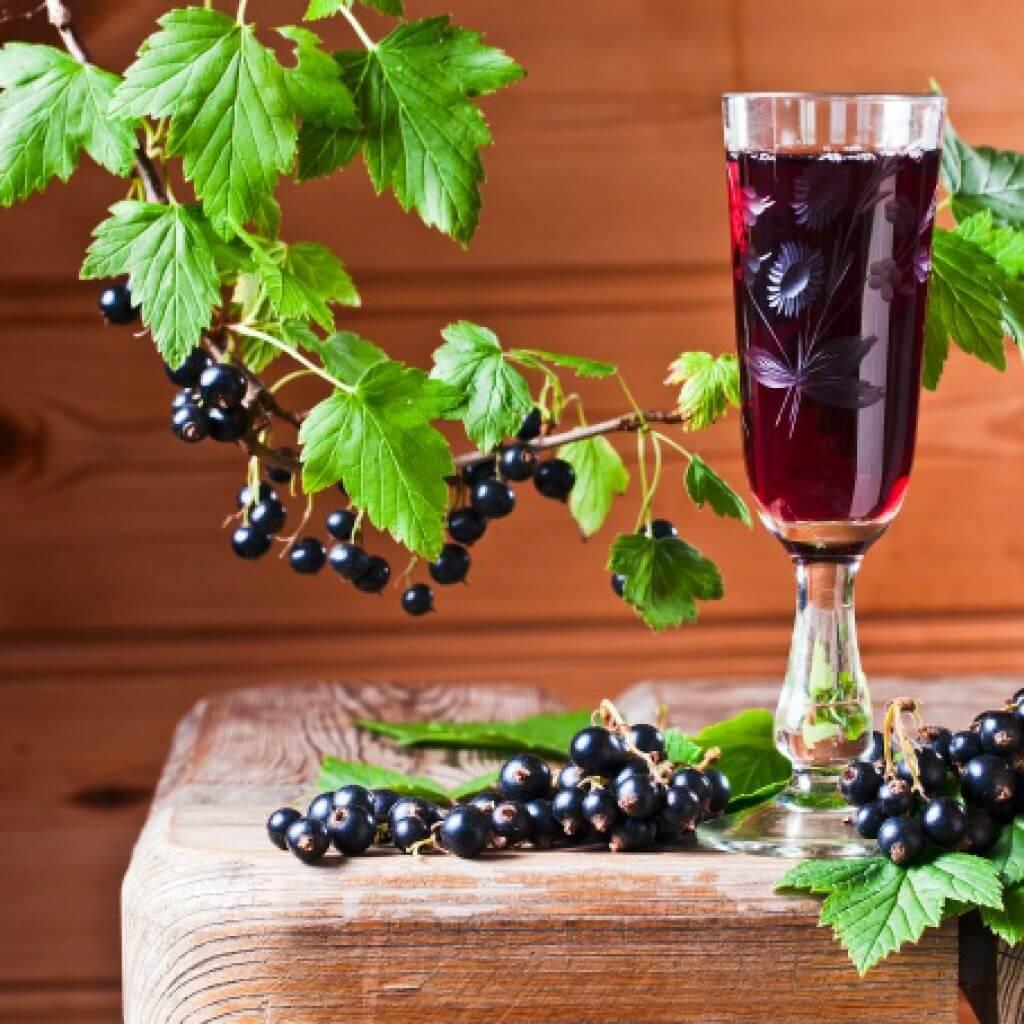 Рецепт отличного вина из черной смородины