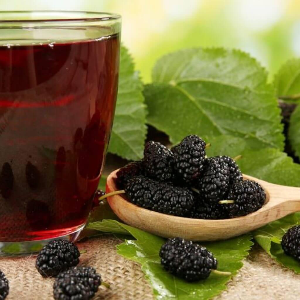 Рецепт домашнего вина из шелковицы