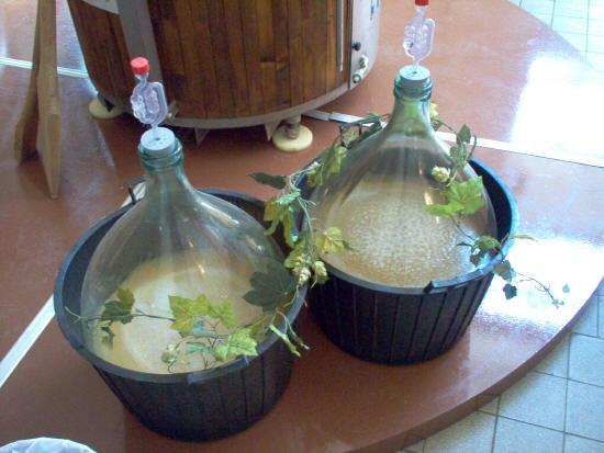 Самогон и брага из березового сока. Рецепт в домашних условиях