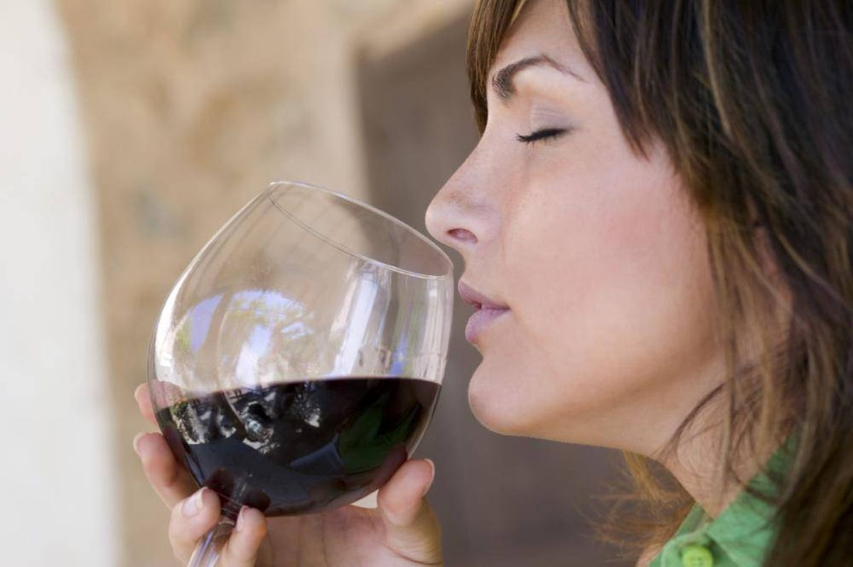 Виды дегустации вина