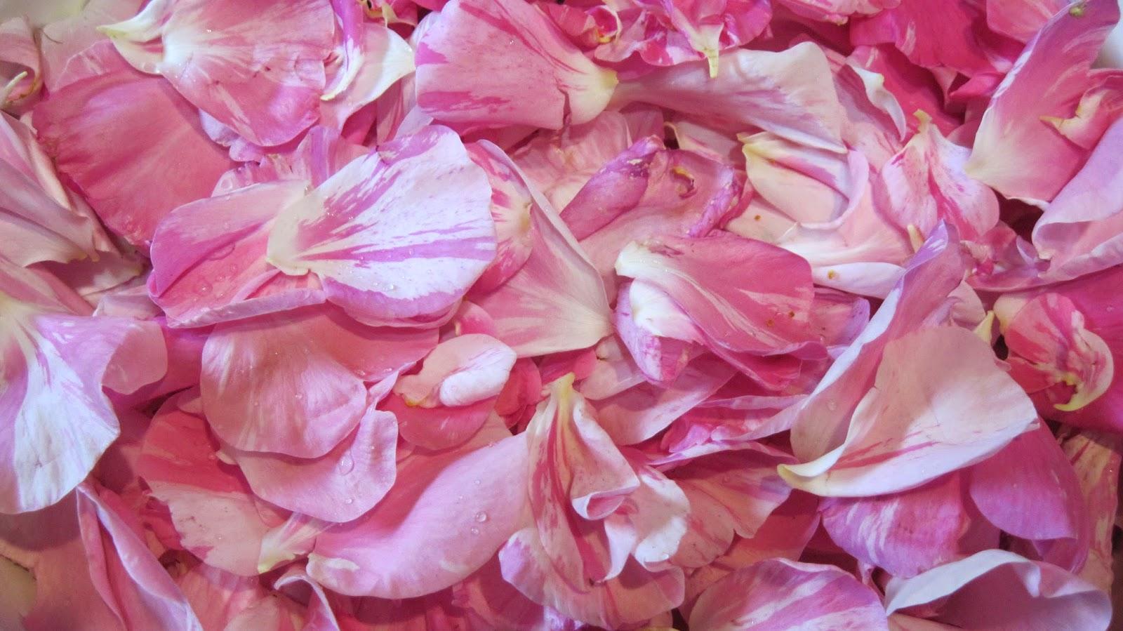 Рецепт ликера из лепестков роз