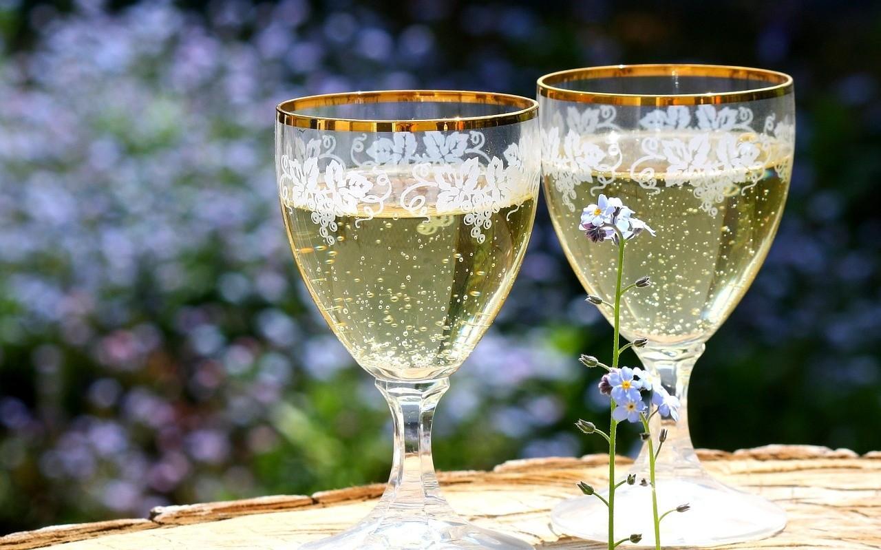 Как сделать шампанское из бузины в домашних условиях
