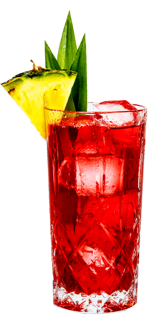 CRANBERRY PINEAPPLE GIN JUICE