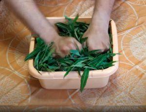 Заготовка иван-чая (шаг-2)